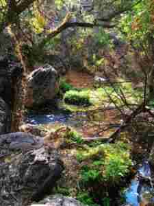 hidden secret areas