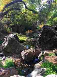Natural spring
