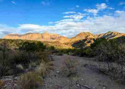 view of the chisos mounts from the upper burro mesa pour off trail