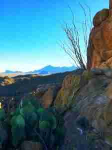 view of the chisos from grapevine hills