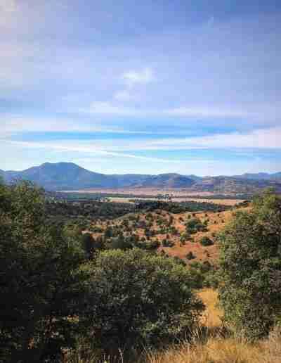 Davis_Mountains