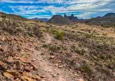 Big_Bend_National_Park_ Mule_Ear_Springs_Trail-15