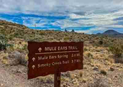 Big_Bend_National_Park_ Mule_Ear_Springs_Trail-16