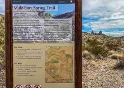Big_Bend_National_Park_ Mule_Ear_Springs_Trail-17