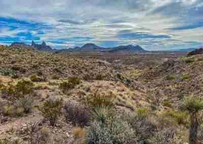 Big_Bend_National_Park_ Mule_Ear_Springs_Trail-18